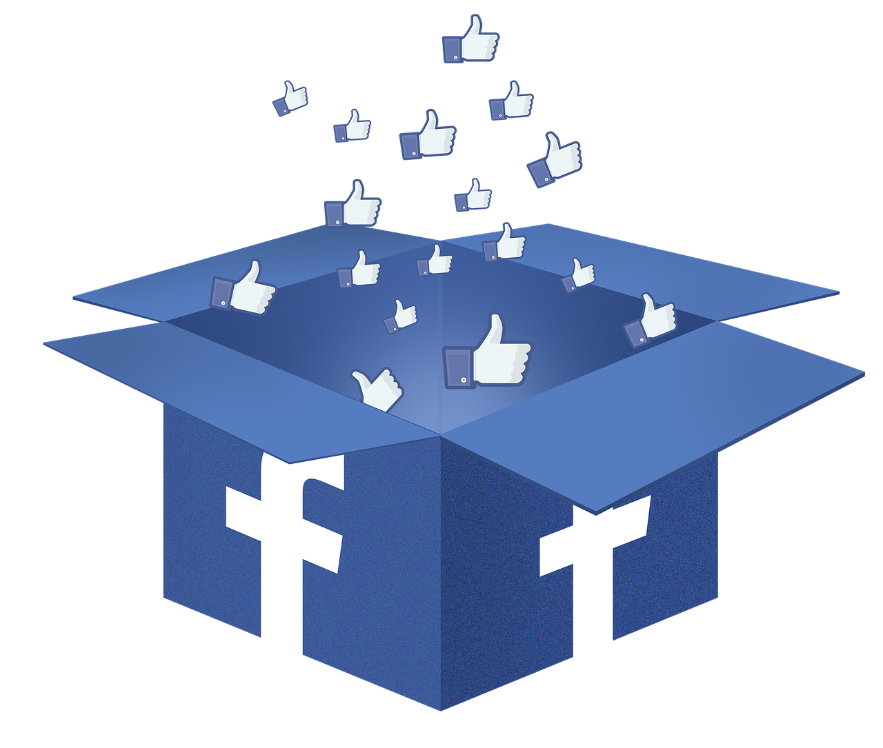 catégorie page Facebook